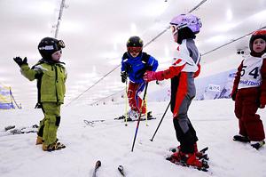 Лыжи в Москве